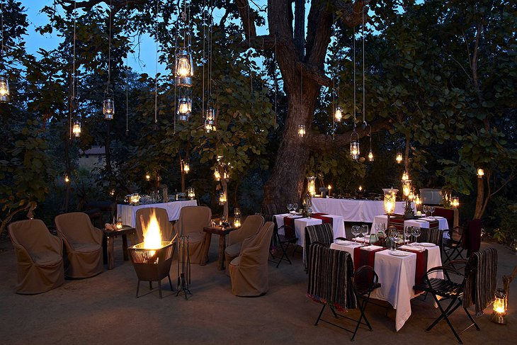 Samode Safari Lodge dining under the tree of lights