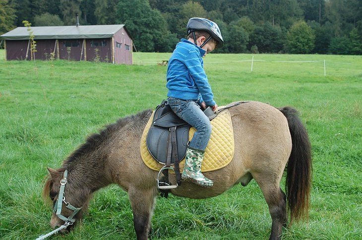 Kid sitting on a horse