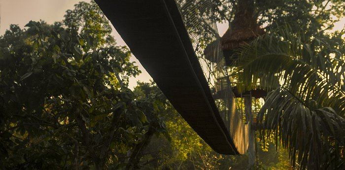 Treehouse Lodge Iquitos - Tree top canopy bungalows with Peruvian Amazon panorama