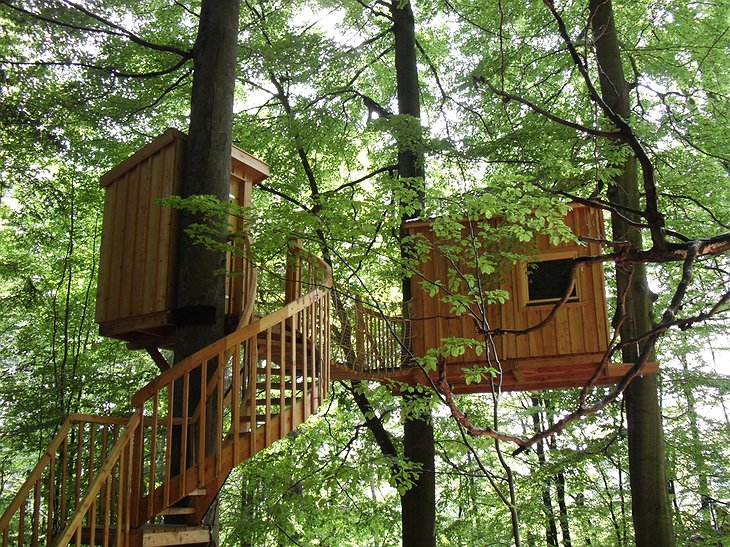 Baumhaushotel Solling treehouses