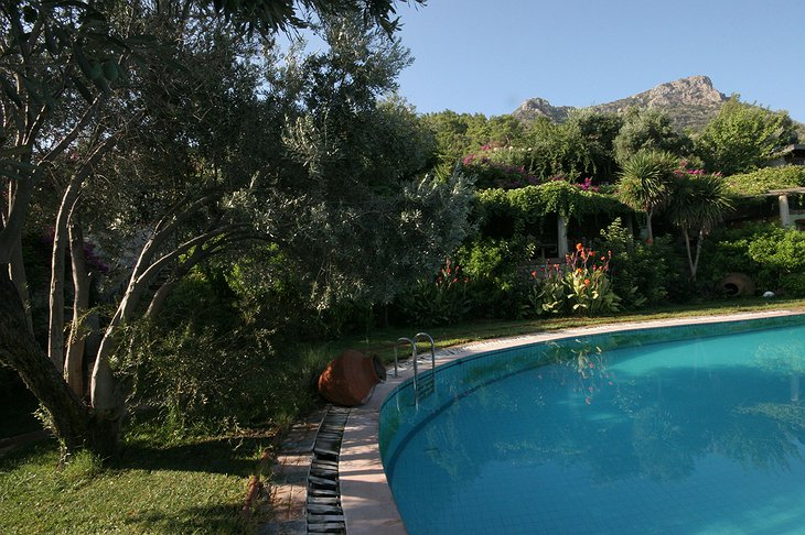 Antik Zeytin Hotel at the pool