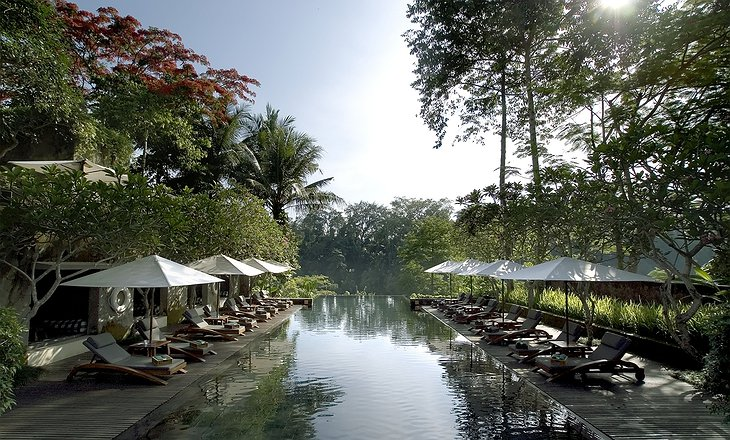 Maya Ubud Resort main pool