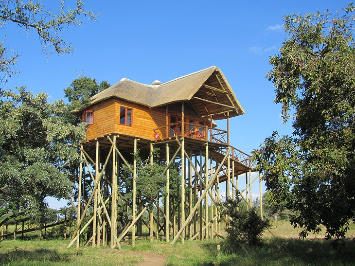 Pezulu Tree House Game Lodge