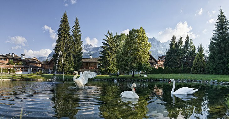 Green Spa Resort Stanglwirt Swan Lake