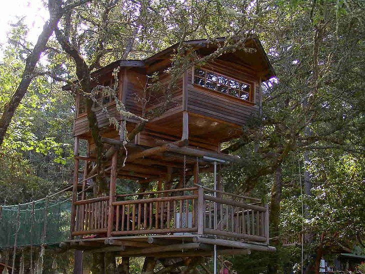 Swiss Family tree house