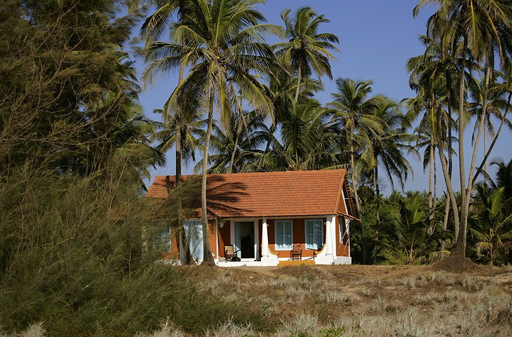 Elsewhere Goa house with palms