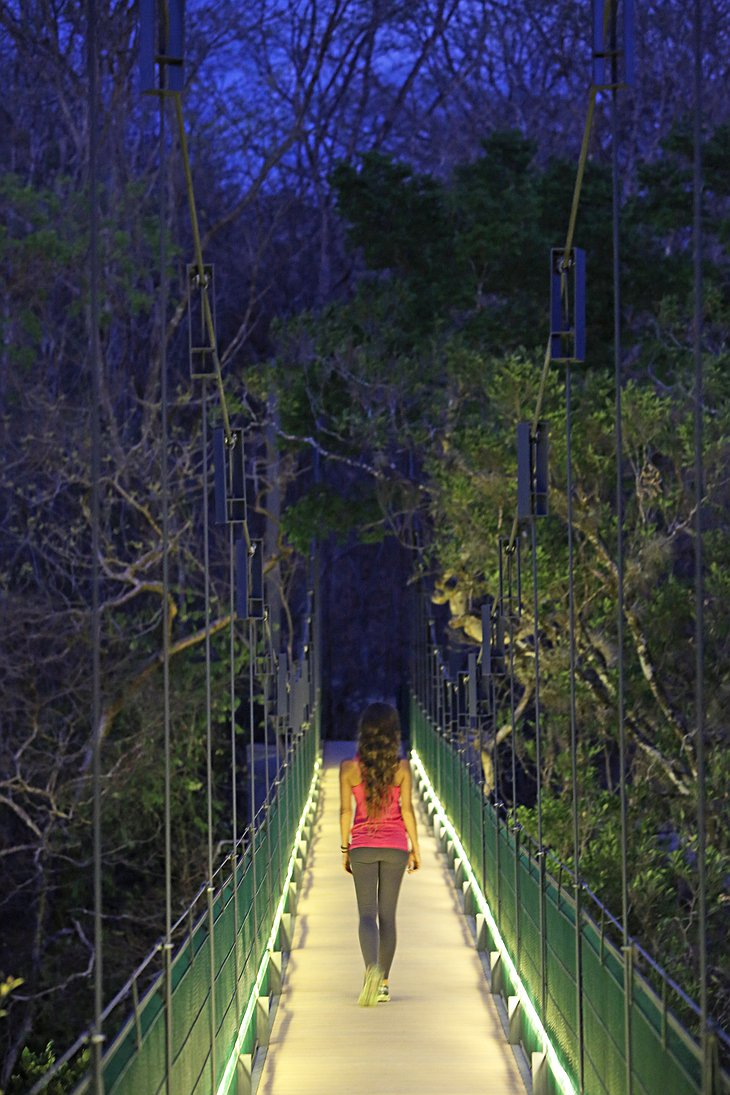 Rio Perdido lodge Hanging bridge