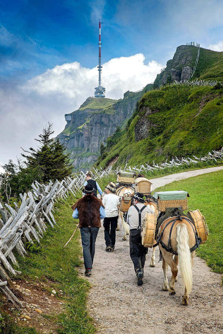 Hike up to the Mountain Rigi