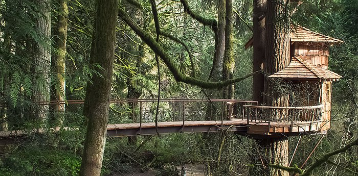 TreeHouse Point - Retreat along the Raging River for nature lovers