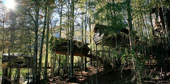 Canopy Village – Treehouse swinging life