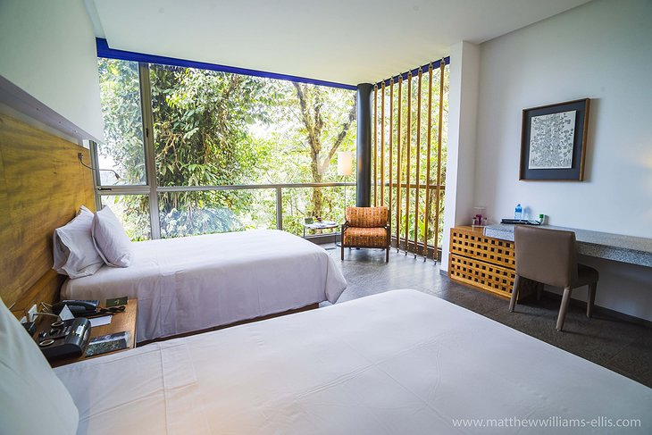 Mashpi Jungle Lodge room with nature views