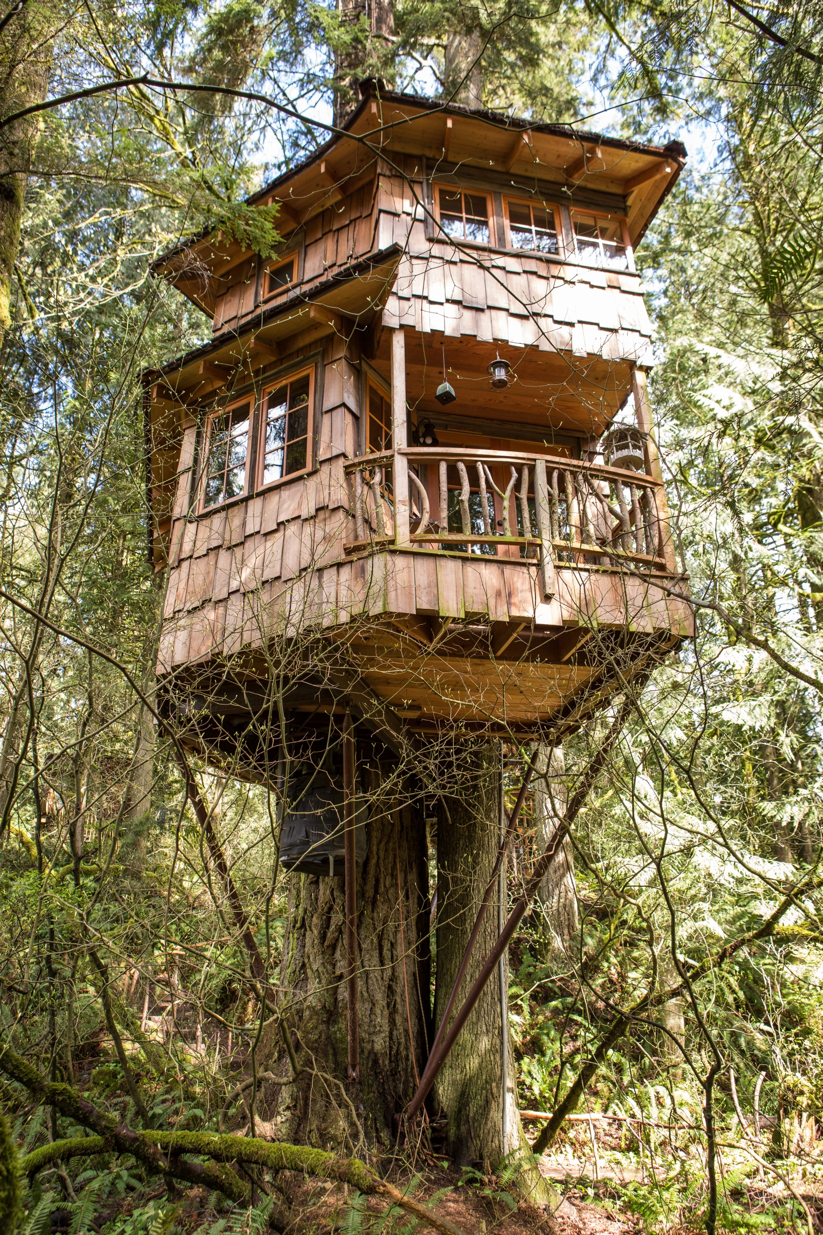 Treehouse Point Retreat Along The Raging River For Nature Lovers