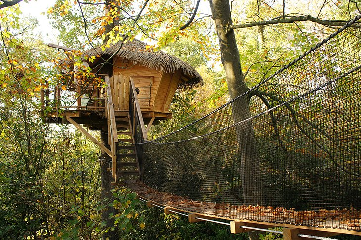 Couple tree house
