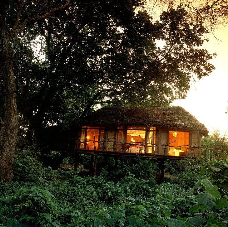 Treehouse suite exterior at &Beyond Lake Manyara Tree Lodge