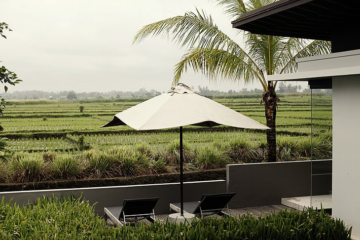 Terrace pool villa with rice paddies view