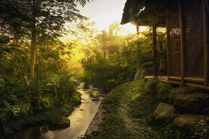 Hideout Bali bamboo house morning view