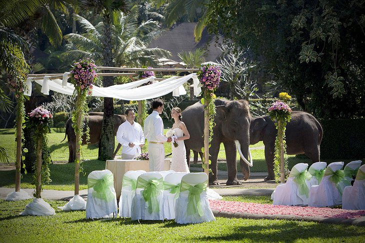Wedding with elephants