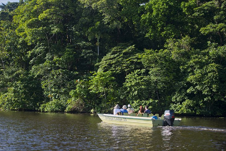 Tortuguero National Park Boat Tour