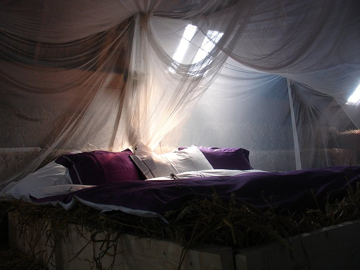 Fairytale bed