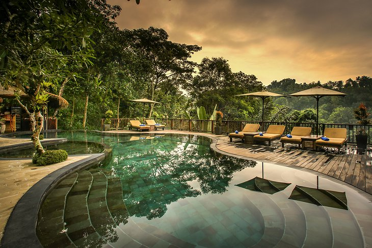 Nandini Jungle Resort Pool