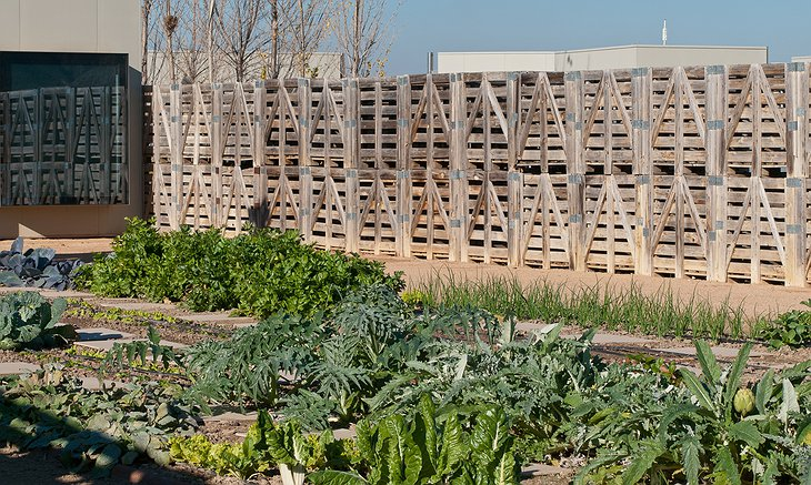 Hotel Aire de Bardenas vegetable garden