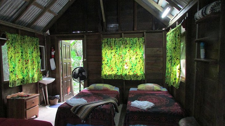 Parrot Nest Lodge twin room