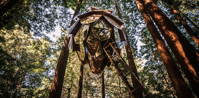 O2 Treehouse - Pinecone-shaped treehouse with panoramic views of Red Wood forest, California