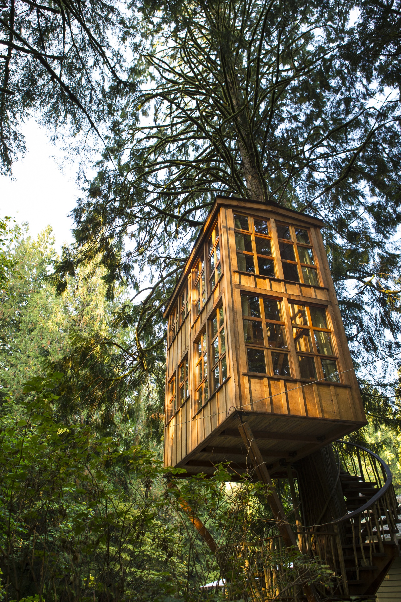 treehouse masters treehouse point. Interesting Point Trillium Tree House In Treehouse Masters Point