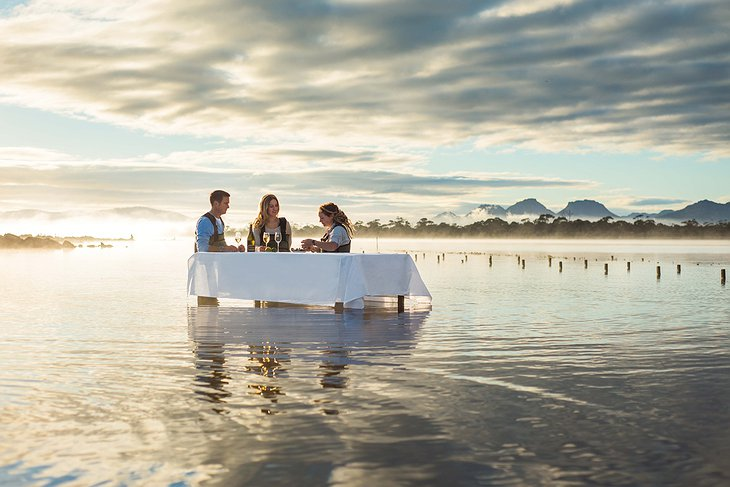 Oyster dinner in the water in Tasmania