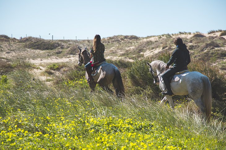 Sintra-Cascais Natural Park Horseback Riding