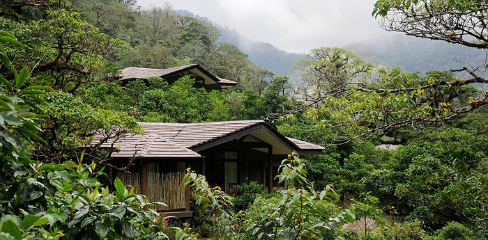 El Silencio Lodge & Spa - Soul-Soothing Sanctuary In Costa Rica