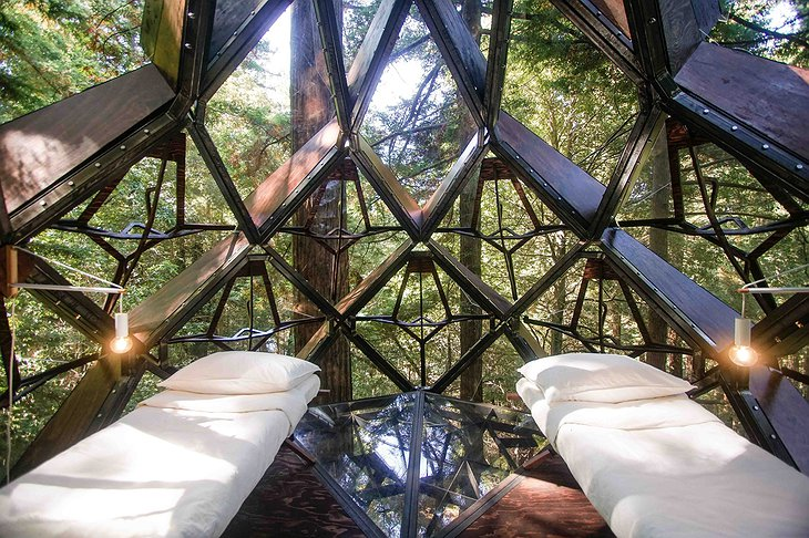 O2 Treehouse Pinecone Beds