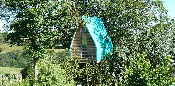 Tree Sparrow House - A Handcrafted Treehome In England