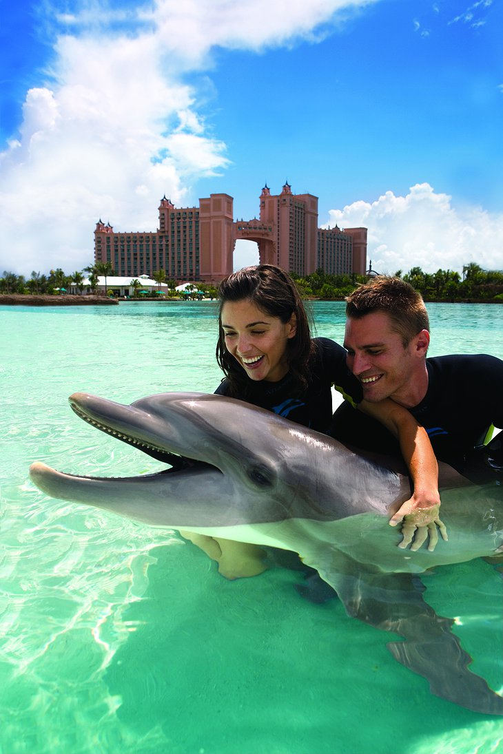 Couple hugging a dolphin