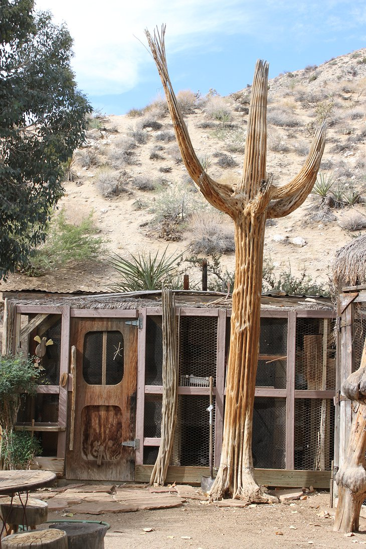 Genuine Draft Horse Ranch giant cactus