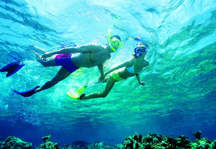 Snorkelling In Crystal Clear Warm Waters