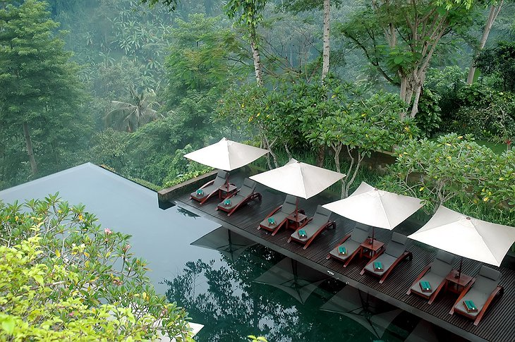 Maya Ubud Resort swimming pool with jungle view