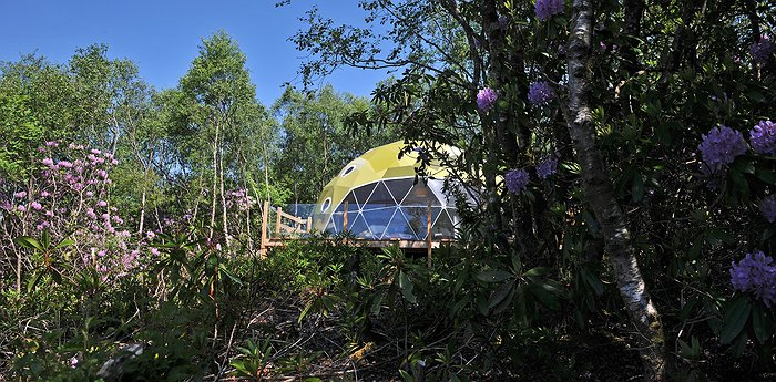 Ecopod Boutique Retreat - Funky Pods In A Birch Woodland Setting