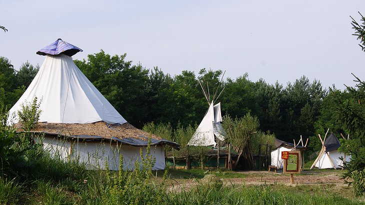 White tents at Baumhaushotel camp site