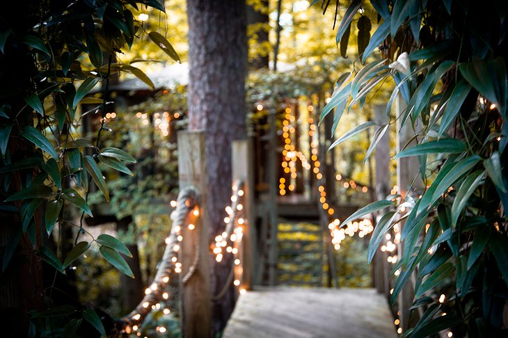 Secluded Intown Treehouse glowing lights
