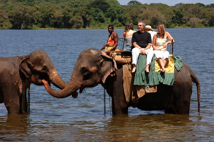 Kandalama Wewa Lake elephant ride