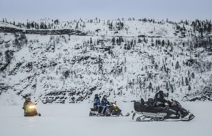 Snowmobiles in the wild
