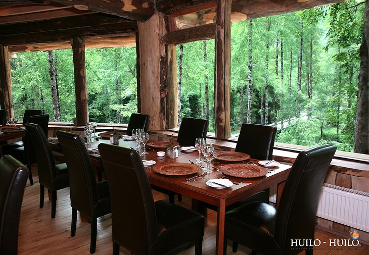 Dining at Hotel Baobab with view on the forest